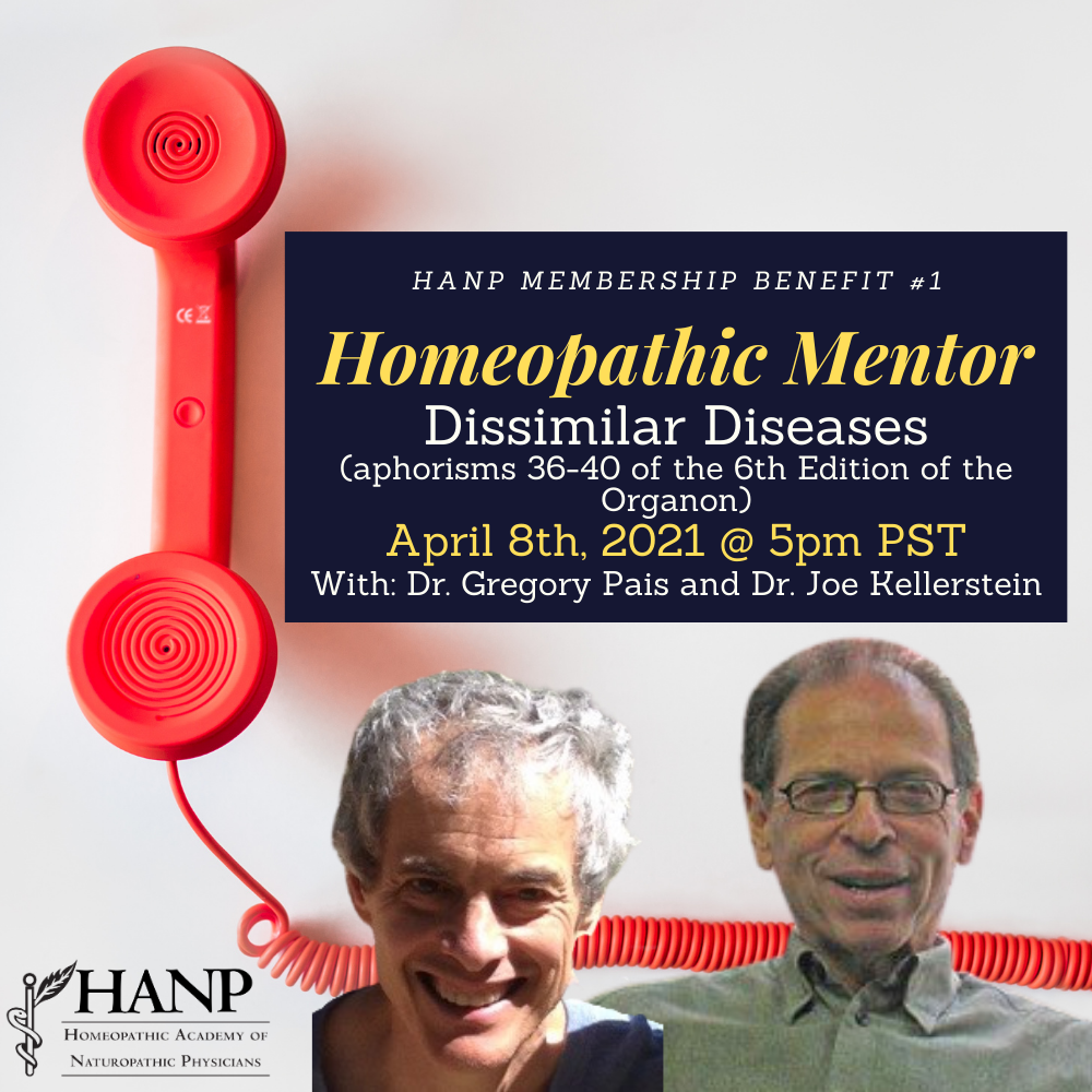 Homeopathic Mentor - April. Dr. Gregory Pais and Dr. Joe Kellerstein